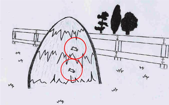 Для чого служили гілки в копиці сіна?