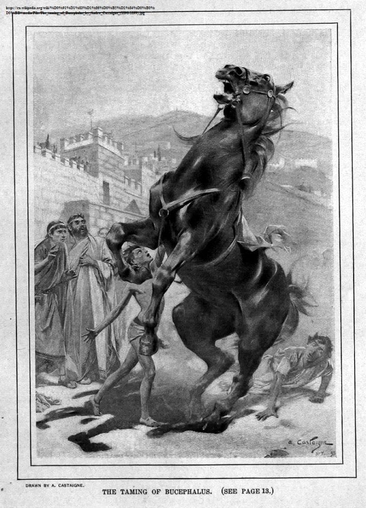 C:\Users\Администратор\Desktop\800px-The_taming_of_Bucephalus_by_Andre_Castaigne_(1898-1899).jpg